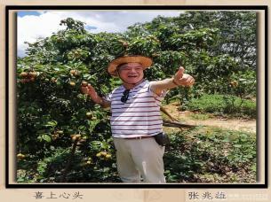 惠州市老干部书画摄影协会