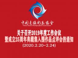 协会关于召开2019年度
