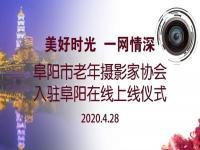 祝贺阜阳市老年摄影家协会入驻阜阳在线!