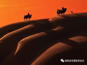 内蒙奈曼摄影创作团之大漠