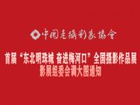 """首届""""东北明珠城 奋进梅河口""""全国摄影作品展影展组委会调取大"""