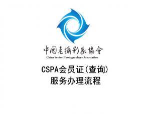 CSPA会员证(查询)服务办理